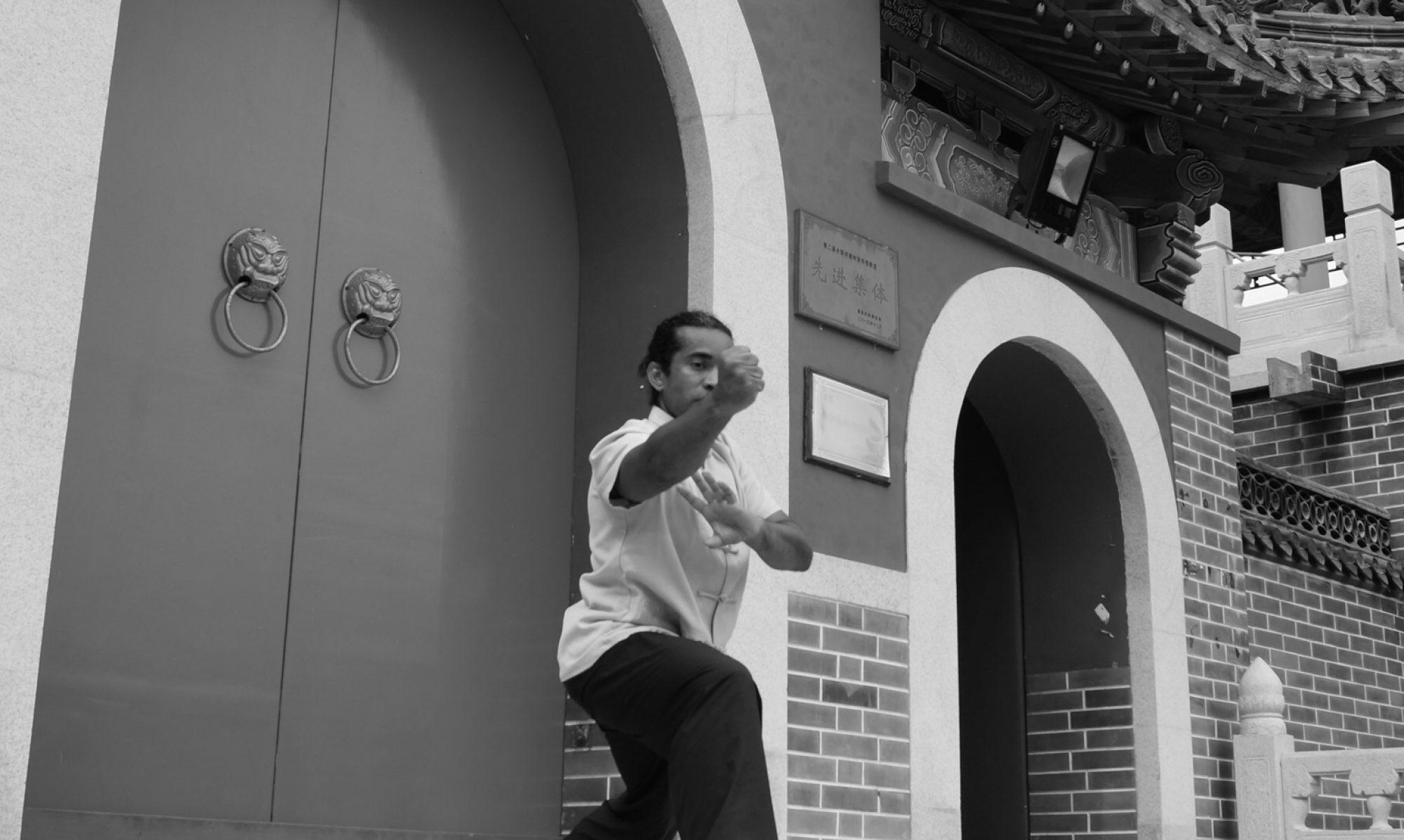 Nan Tien Men Poon Sing Choy Lee fut Kung fu